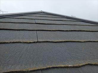 流山市駒木で行ったコロニアル屋根調査で防水性の低下により苔・藻・カビが発生