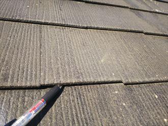 流山市平和台で行った化粧スレート屋根調査で屋根材の反りを発見