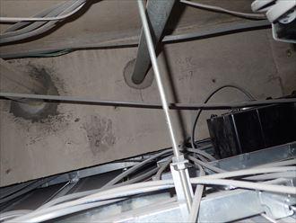 木更津市 タク動物病院 調査