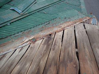 野地板と金属屋根材の腐食
