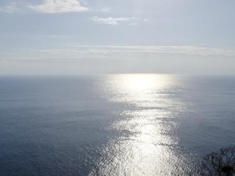 穏やかな太平洋