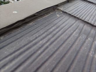 市原市 破風の調査と屋根011_R