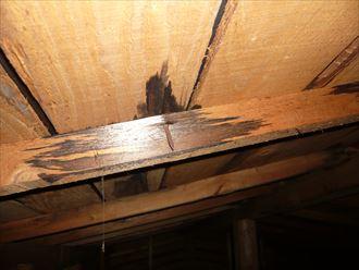 君津市 金属屋根の雨漏り調査004_R