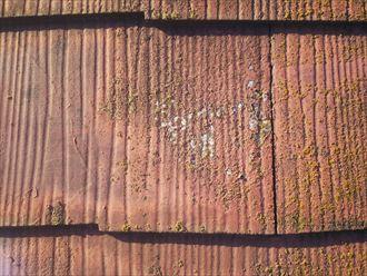 野田市岩名で行った化粧スレート屋根の調査で塗装が剥がれ素地が露出している化粧スレート
