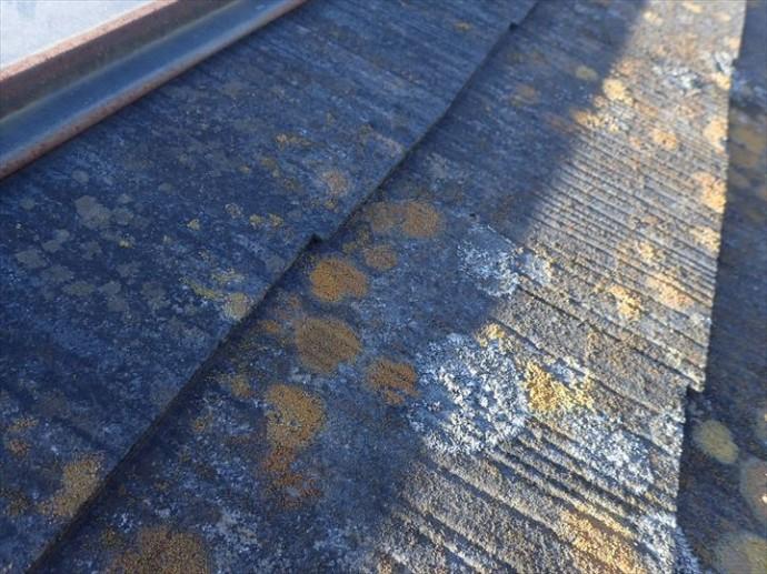 千葉市美浜区真砂で行った化粧スレート屋根調査で屋根材の劣化や棟板金の劣化が進行しています