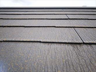 松戸市大橋で行ったコロニアル屋根調査で塗装の劣化により反りが発生