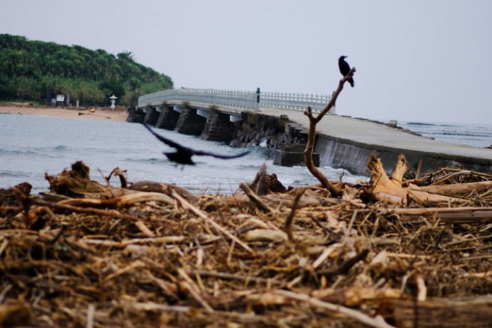 台風通過後の朝