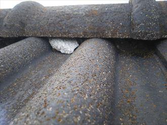 野田市山崎で行った瓦屋根の調査で雨漏りに繋がる漆喰の剥がれ