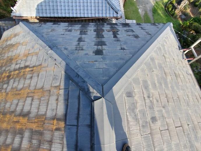 屋根に苔・藻・カビが発生