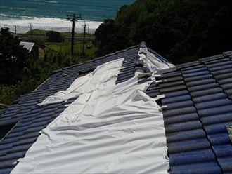 勝浦市 台風被害005_R