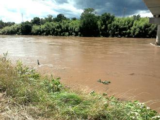 増水した川