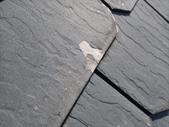 千葉市中央区 屋根塗装調査005_R