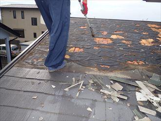 屋根の上を移動中