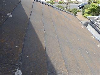 松戸市松飛台で行った化粧スレート屋根調査で苔などが発生し防水性が低下している化粧スレート屋根は耐久性の低下に繋がります