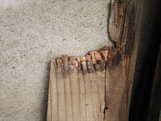 雨水の浸入を防ぐため棟板金の交換工事を行いました|袖ヶ浦市