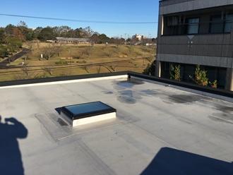 市原市ちはら台にてシート防水された陸屋根をウレタン密着工法でメンテナンスビフォー