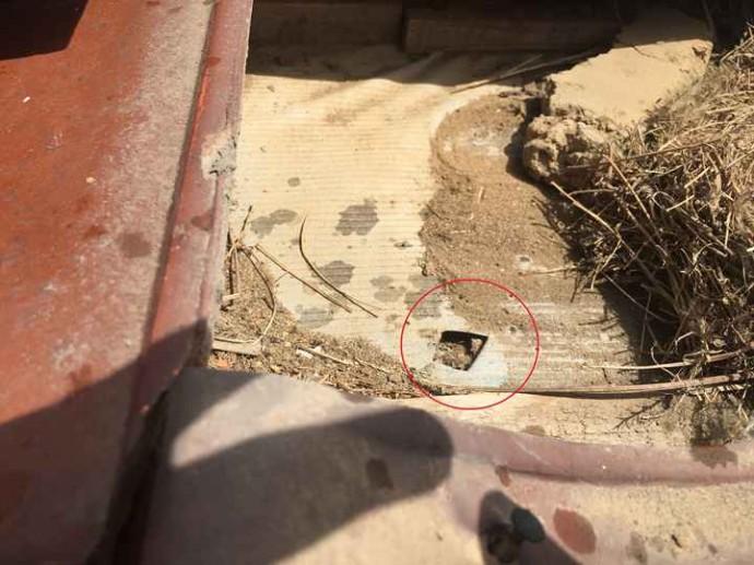 瓦屋根の一枚を剝がし防水紙の確認