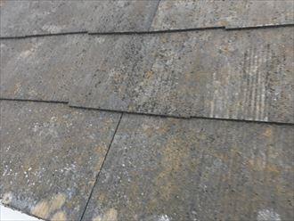 屋根材,表面