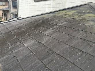 スレート屋根の調査、苔カビ確認