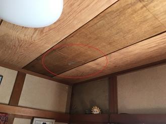 目透かし天井に雨染み確認