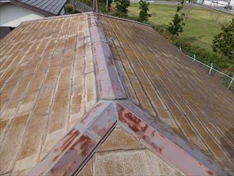 千葉市中央区,屋根,苔,錆