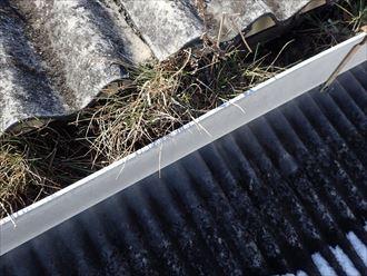 富津市 雨樋の詰まり