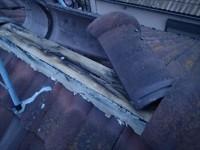 市原市の棟取り直し工事タフモック使用