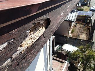 君津市 木部の腐食による穴