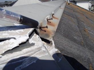 棟板金を固定する釘が浮いていました