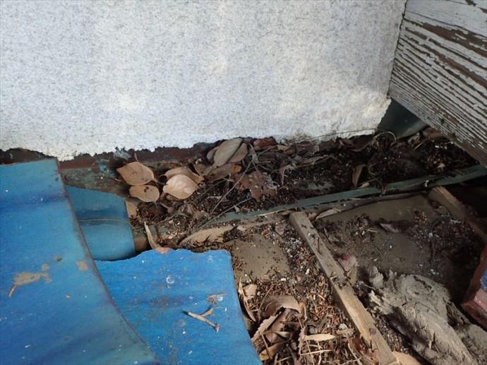 木更津市 枯葉の詰まり・防水紙の劣化