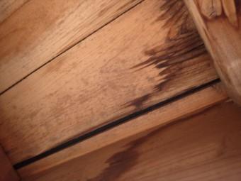 富津市 屋根下地に雨染み