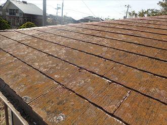 君津市 屋根調査苔の発生