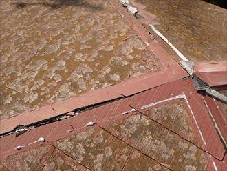 君津市 棟板金の損傷