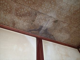 袖ケ浦市 室内天井