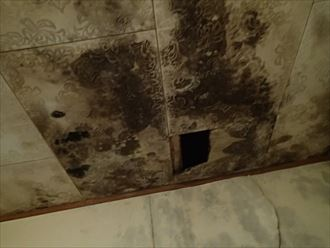 君津市の谷板金詰まりによる雨漏り