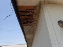千葉市美浜区磯辺にて経年劣化で剥がれてしまった軒天の補修と併せて波板交換ビフォー