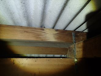印旛郡 屋根からの浸水