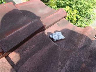 木更津市 漆喰の欠片
