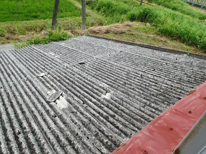 市原市 屋根材の飛散による被害拡大