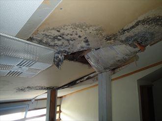 富津市の雨漏り調査、原因は屋根からの浸水