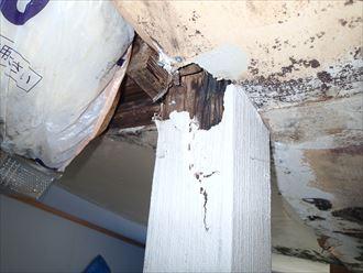 富津市 雨漏り被害による腐食