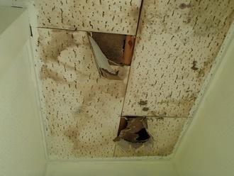 天井板から雨漏り、ジプトーン腐食