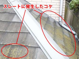 野田市 スレート屋根