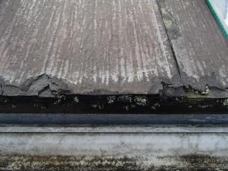パミール屋根の剝離現象