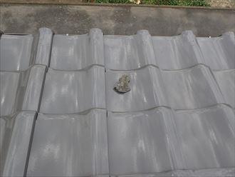 君津市 漆喰の二次被害