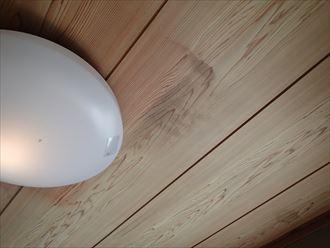 鳩小屋が原因による雨漏り|木更津市