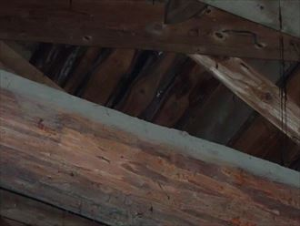 木更津市 屋根裏調査