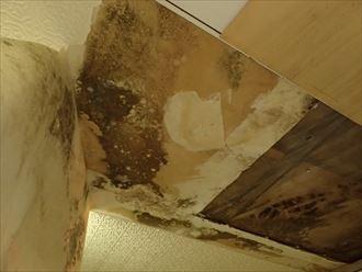 市原市の住宅折板屋根、同形屋根張替え工事で雨漏り修理