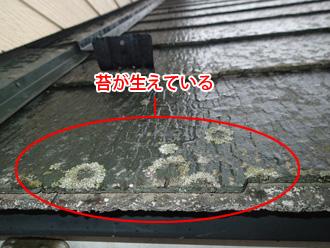 千葉市若葉区 スレート屋根の点検 苔が生えている
