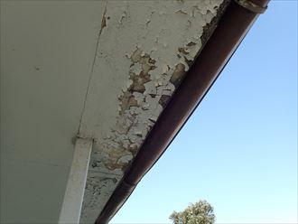 市原市 天井材の腐食